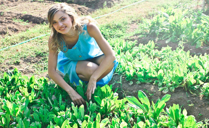 Creating an Elegant Vegetable Garden at Your Home